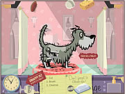 Click to Play Pet Spa Challenge