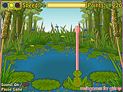 Click to Play Froggie The Fly Catcher