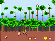 Click to Play Super Raccoon