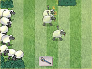 Click to Play Sheep Dash